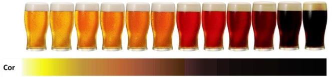 Beer-Sampler-SRM-1024x275